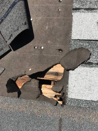 Roof + Shingle Replacement - Repair